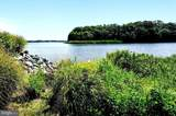 980 South River Landing Road - Photo 2