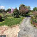 13587 Oaks Road - Photo 40