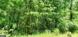 111 Duwamish Trail - Photo 5