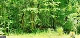 111 Duwamish Trail - Photo 6