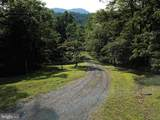 38 Black Bear Trail - Photo 43