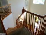 5180 Curly Horse Drive - Photo 18