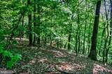 Supinlick Ridge Road - Photo 2