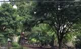 1026 Orianna Street - Photo 18