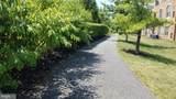 8605 Wandering Fox Trail - Photo 44
