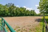 10303 Cedar Spring Lane - Photo 41