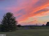 10303 Cedar Spring Lane - Photo 52