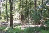 21717 Boonsboro Mountain Road - Photo 1