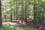 21717 Boonsboro Mountain Road - Photo 3