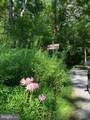 Lot 27 Cacapon Retreat Lane - Photo 17