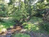 16310 Brice Hollow Road - Photo 5