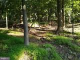 Lot 6S Shenandoah Valley - Photo 1