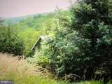 1779 Fort Run Road - Photo 22