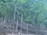 1779 Fort Run Road - Photo 31