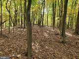 Bear Garden Trail - Photo 100