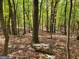Bear Garden Trail - Photo 103