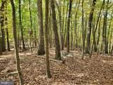 Bear Garden Trail - Photo 104