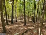 Bear Garden Trail - Photo 105