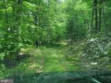 Bear Garden Trail - Photo 72