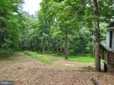 Bear Garden Trail - Photo 74
