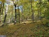 Bear Garden Trail - Photo 75