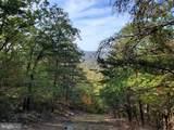 Bear Garden Trail - Photo 80