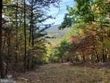 Bear Garden Trail - Photo 83