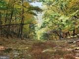 Bear Garden Trail - Photo 84