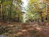 Bear Garden Trail - Photo 85