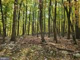 Bear Garden Trail - Photo 87