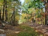 Bear Garden Trail - Photo 88