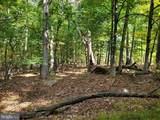 Bear Garden Trail - Photo 89