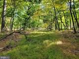 Bear Garden Trail - Photo 90