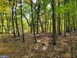 Bear Garden Trail - Photo 91