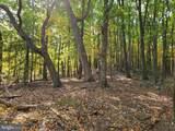Bear Garden Trail - Photo 92
