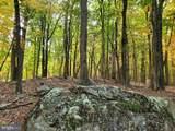 Bear Garden Trail - Photo 93