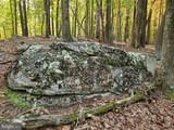 Bear Garden Trail - Photo 94