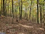 Bear Garden Trail - Photo 95