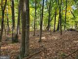 Bear Garden Trail - Photo 96