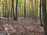 Bear Garden Trail - Photo 97
