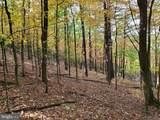 Bear Garden Trail - Photo 98