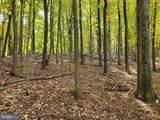 Bear Garden Trail - Photo 99