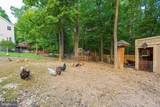 10011 Pine Tree Road - Photo 62
