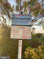 504 Seaweed Lane - Photo 24