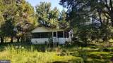 36030 Roosevelt Blvd - Photo 7