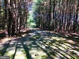 21239 Hickory Lane - Photo 13
