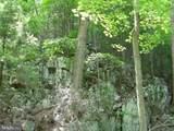 0 Fern Valley Way - Photo 6