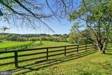 8286 Stable Gate Road - Photo 51
