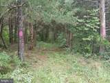 TBD Forest Drive - Photo 5