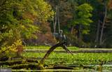 17321 Virginia Pine Way - Photo 39